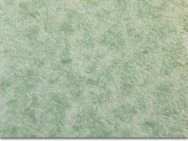 宝静龙塑胶地板